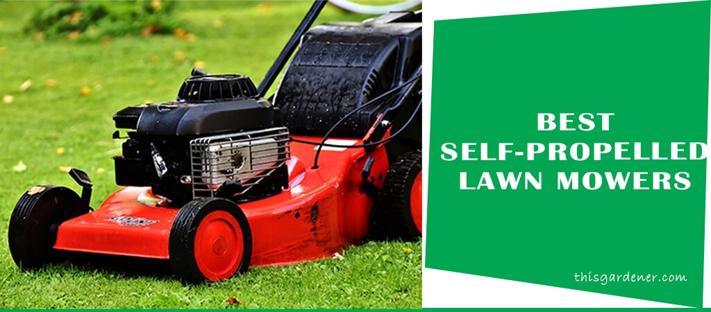 Best Self Propelled Lawn Mowers Under 300 Updated This
