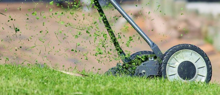 What to Do With Grass Clippings After Mowing image