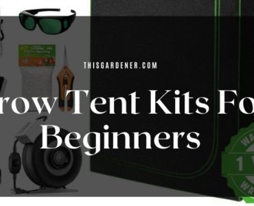 cheap grow tent kits for beginners