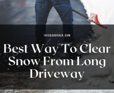 Best Way To Clear Snow From Long Driveway image