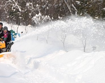 best snow blower for long driveway image